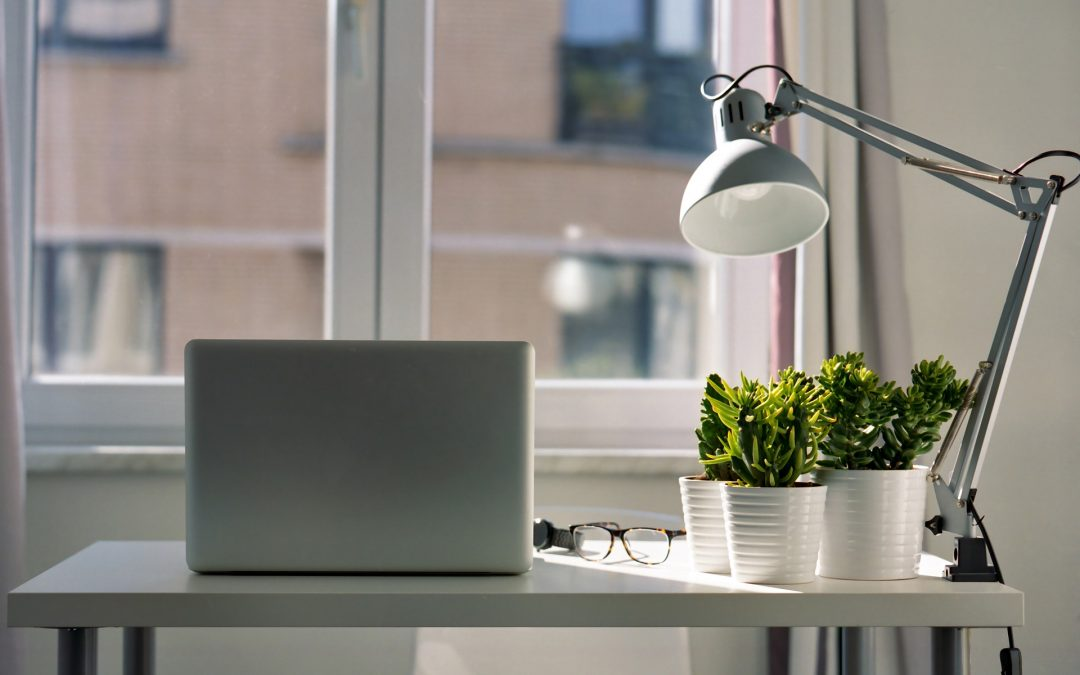 Propel Workplace Productivity with Plants